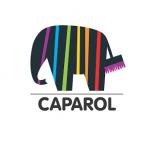 CAPAROL-producator de vopsele lavabile si tencuieli decorative premium